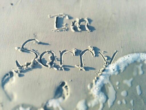 forgiveness_i'm_sorry